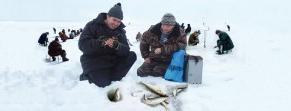 Кайт-турнир Кубок Чкалова 2011